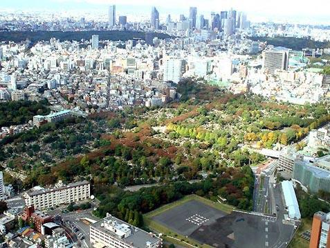 Aerial view of Aoyama Cemetery