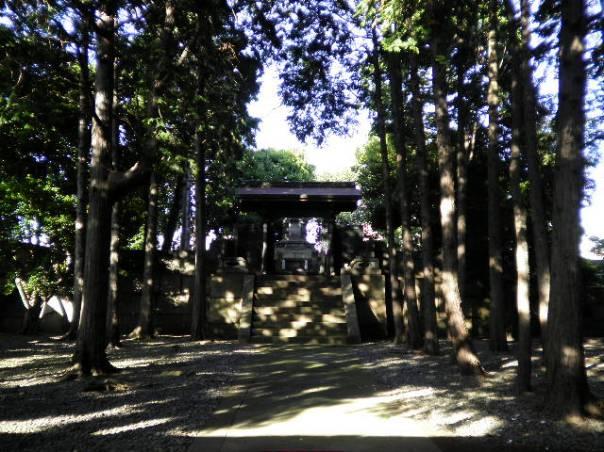 Tokugawa Shogun Family Graveyard Ueno