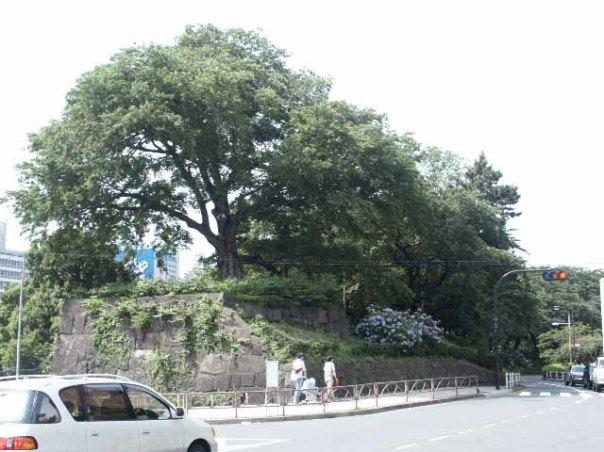 Yotsuya Gate Ruins