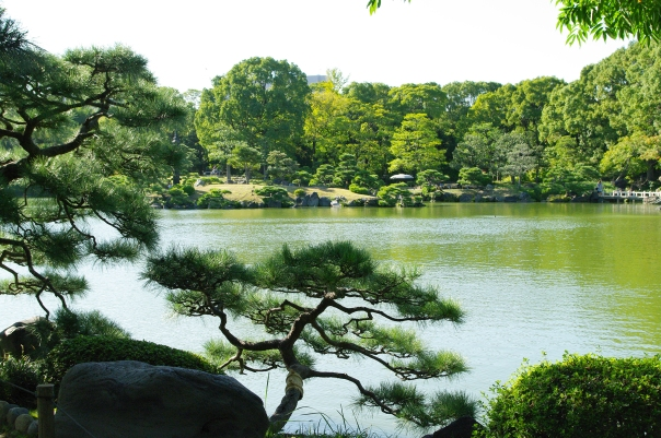 Former daimyo palace turned Zaibatsu playground turned municipal park: Kiyosumi Tei'en. You gotta love Japanese gardens!