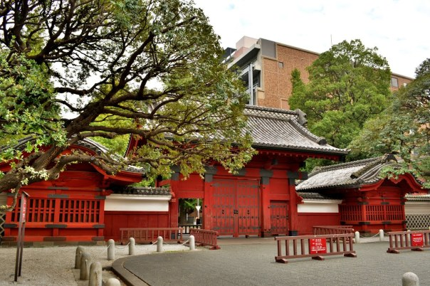 The 御守殿門 Go-Shuden Mon also called 御住居表御門 Go-Shukyo Omote Go-Mon but popularly referred to as 赤門 Aka Mon the Red Gate is a symbol of Tokyo University. In fact, the nickname of the university is Aka Mon. This was the front gate of of Kaga's upper residence. It's the only structure that survived an 1855 earthquake that burned down the palace.  The heart of Tokyo University's Hongo Campus is built on the ruins of this sprawling palace.