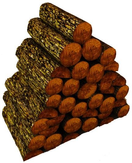 Sexxxy firewood. Awwwwww yeah!