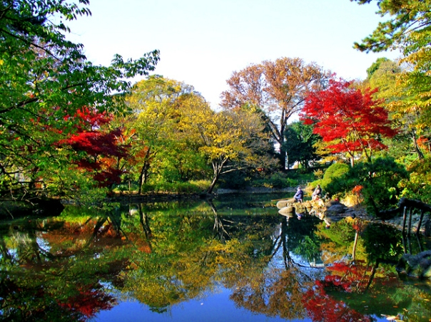 Autumn foliage at the former estate of the Morioka Domain.