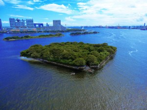 One of the man-made islands built to defend Edo against foreigners.