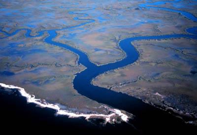 estuary_image1