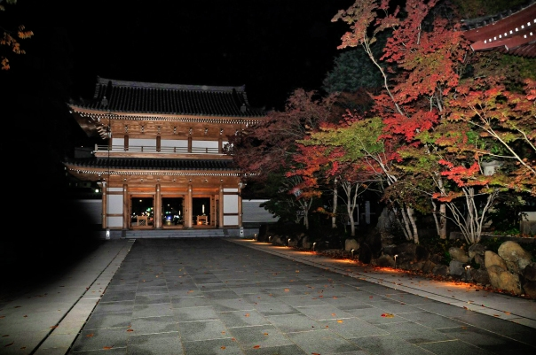 Denzu-in is still a major temple with strong connections to the Tokugawa.
