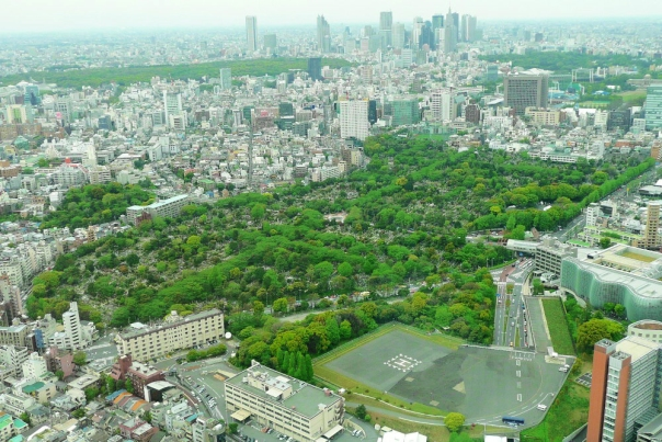 Aoyama Cemetery. A daimyō residence could cover this much territory.