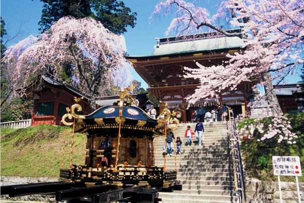 Cherry blossoms at Shiogama Shrine in Miyagi Prefecture.