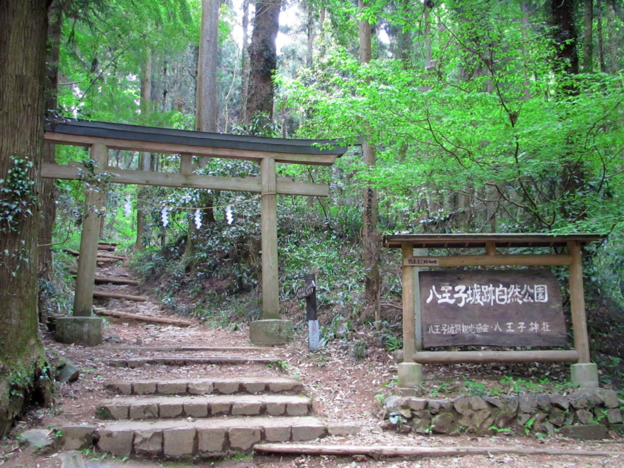 hachioji singles Build your custom hachioji itinerary using our trip planner and have a great  hachioji trip planner  visit a single location or make it a multi-destination.