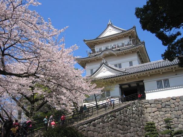 odawara castle okubo clan.jpg